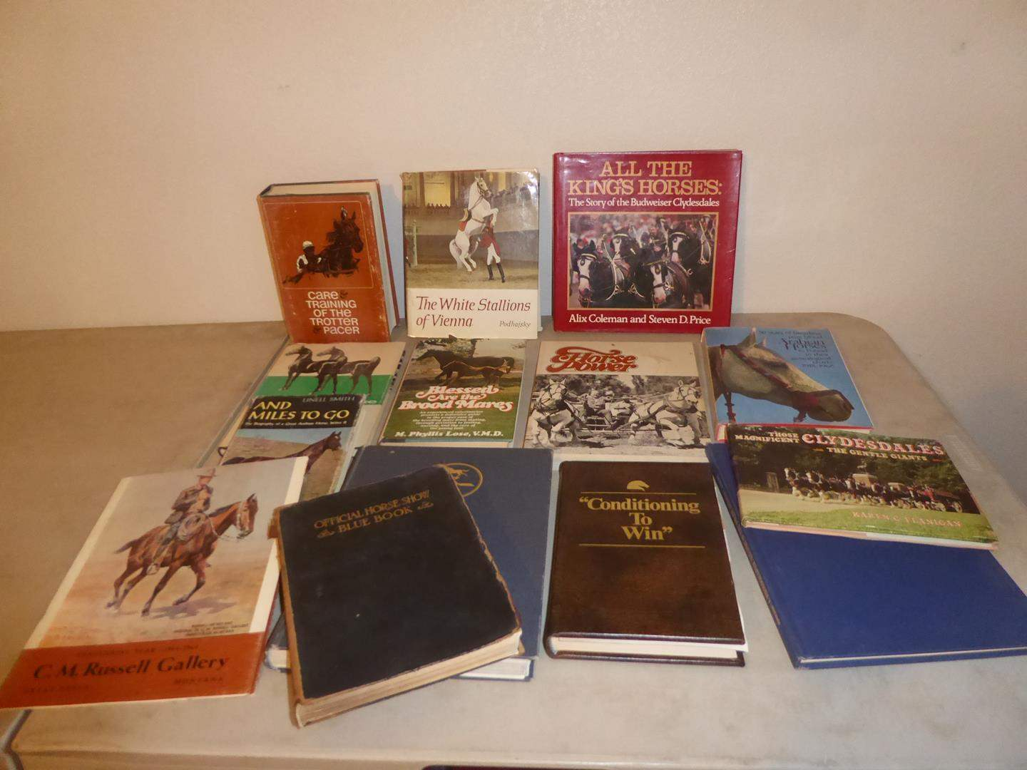 Lot # 81 - Vintage Horse Books Collection (main image)