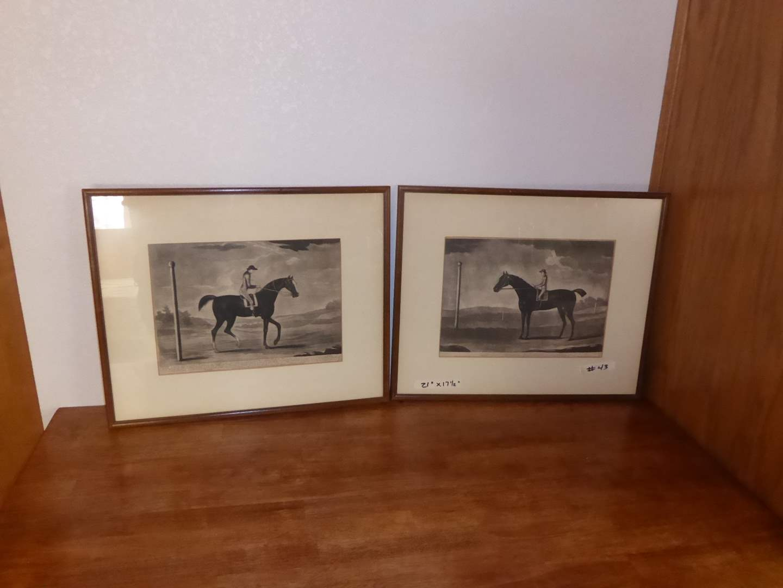 Lot # 43 - Framed British Horse Prints ( Goldfinder & Careless AHorfe) (main image)