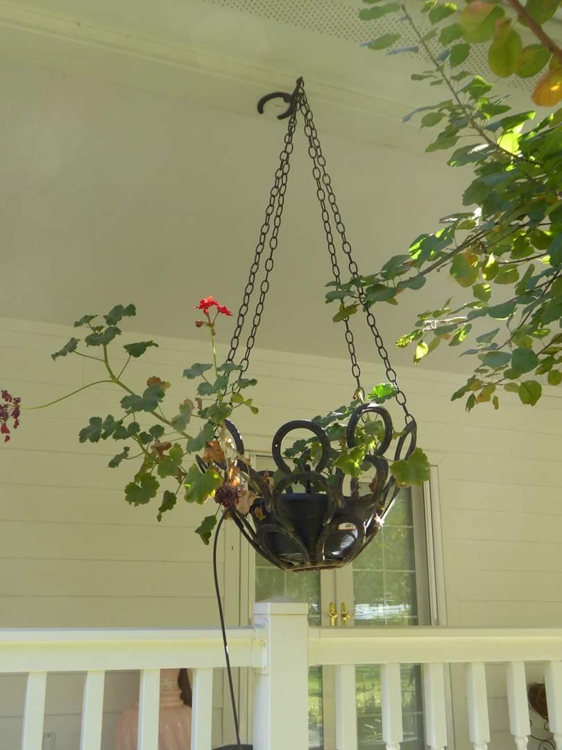 Lot # 116 - Handmade Hanging Horseshoe Planter W/Live Plant (main image)