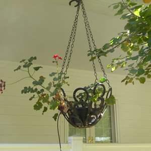 Lot # 116 - Handmade Hanging Horseshoe Planter W/Live Plant