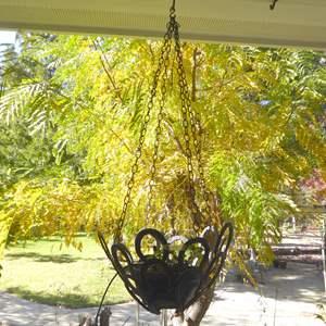 Lot # 117 - Handmade Hanging Horseshoe Planter W/Live Plant