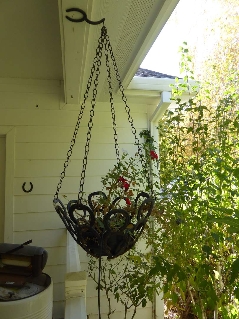 Lot # 118 - Handmade Hanging Horseshoe Planter W/Live Plant   (main image)