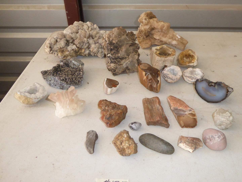 Lot # 125 - Geodes, Crystals, Petrified Wood & Rocks (main image)