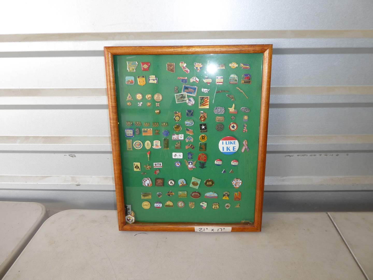 Lot # 184 - Framed Glass Pin Display  (main image)