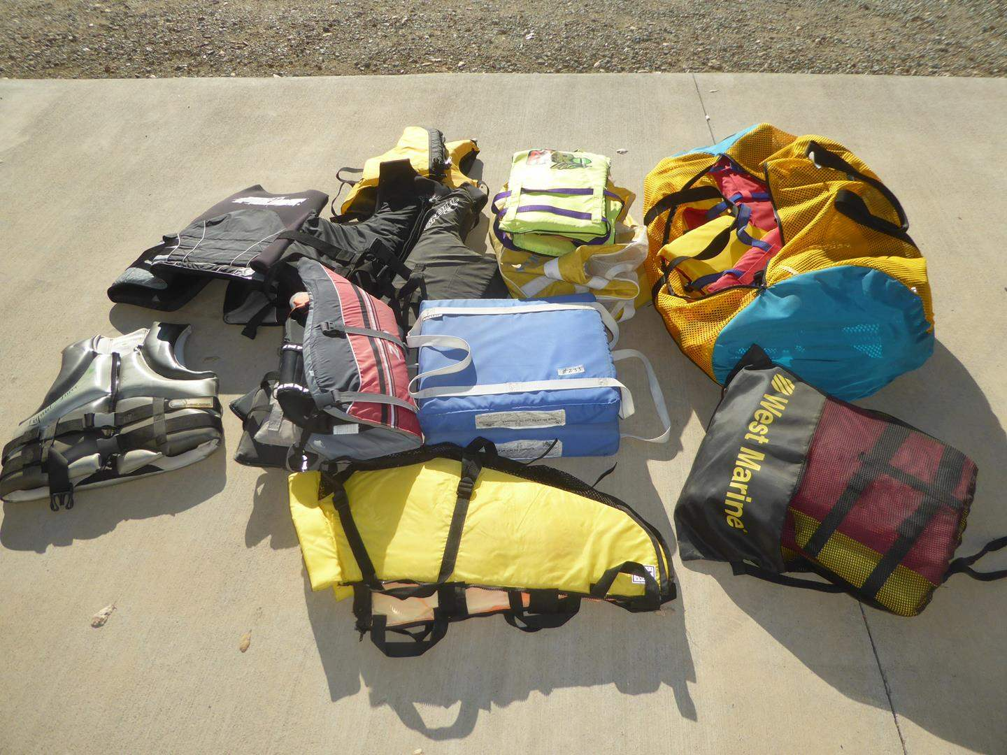 Lot # 233 - Assorted Life Vests & Dog Life Vests - See pics for sizes (main image)