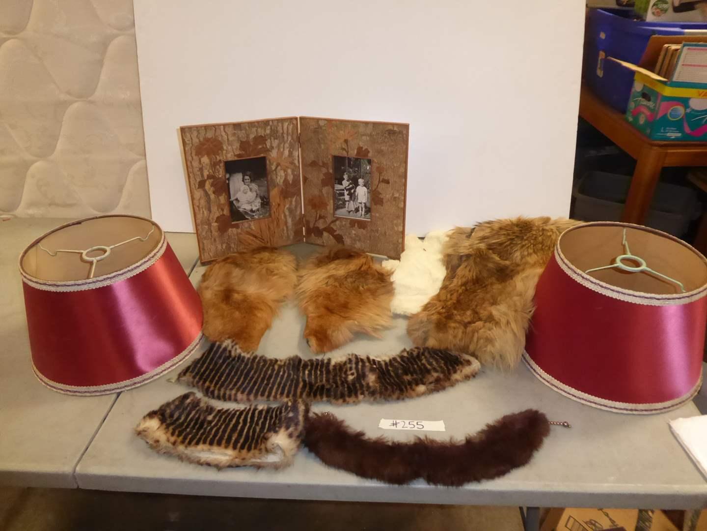 Lot # 255 - Framed Photo, Furs & Lampshades  (main image)