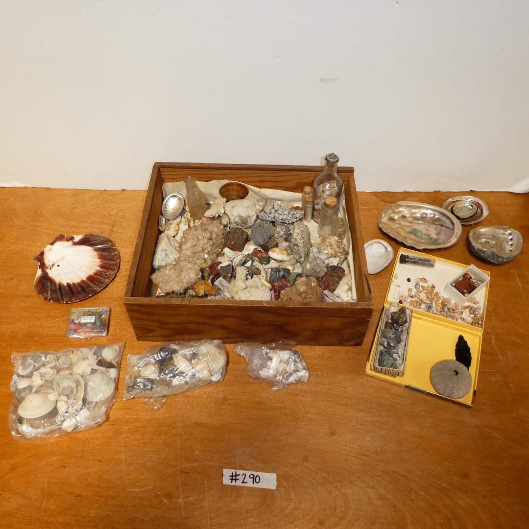 Lot # 291 -  Collection of Rocks, Crystals and Shells (main image)