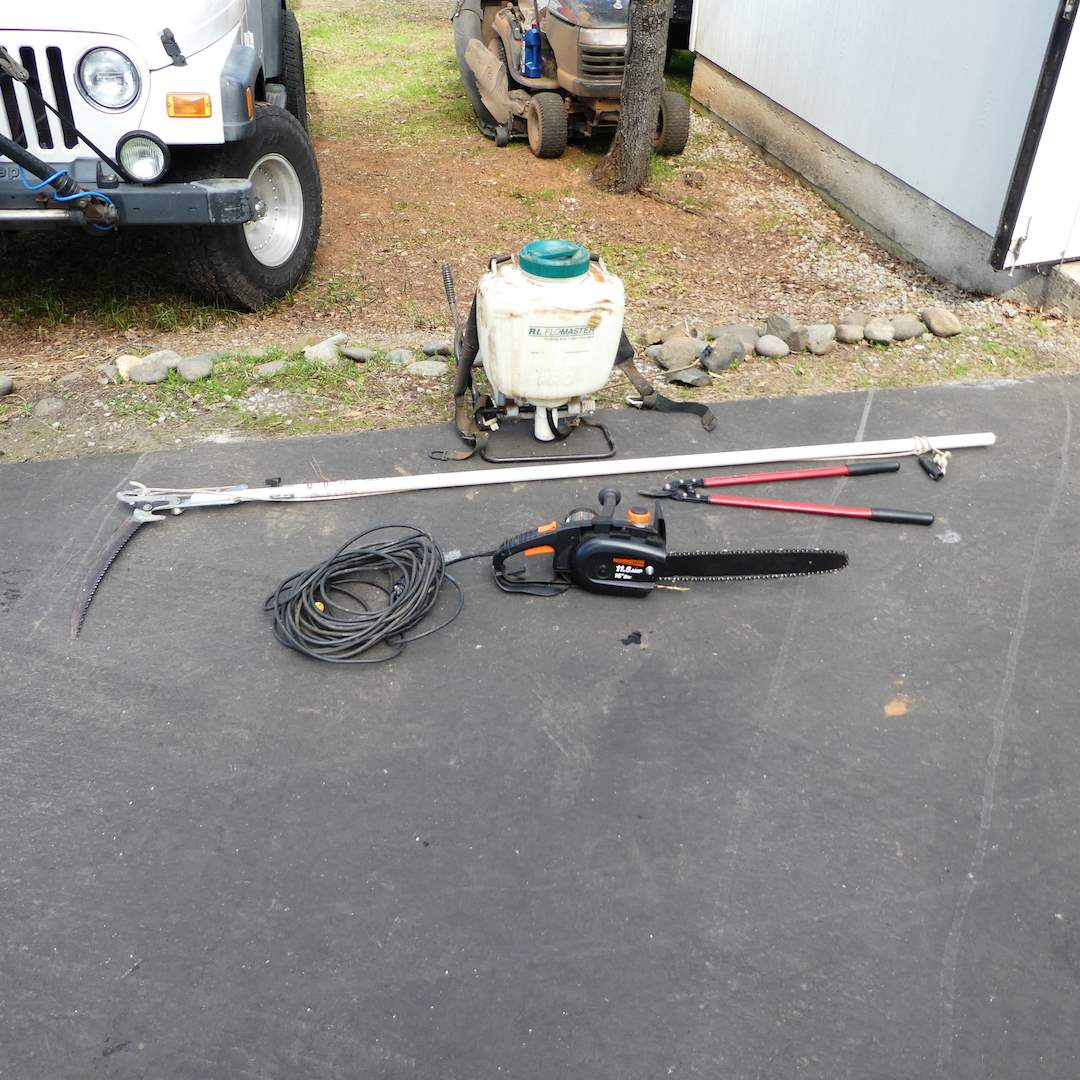 Lot # 335 - RL FloMaster, Remington Electric Chain Saw, Fiskars Manual Pole Saw and Vine Loppers (main image)