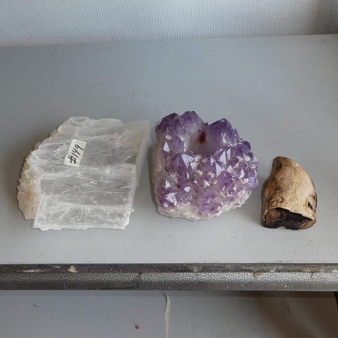 Lot # 149 - Beautiful Rocks & Petrified Wood (main image)
