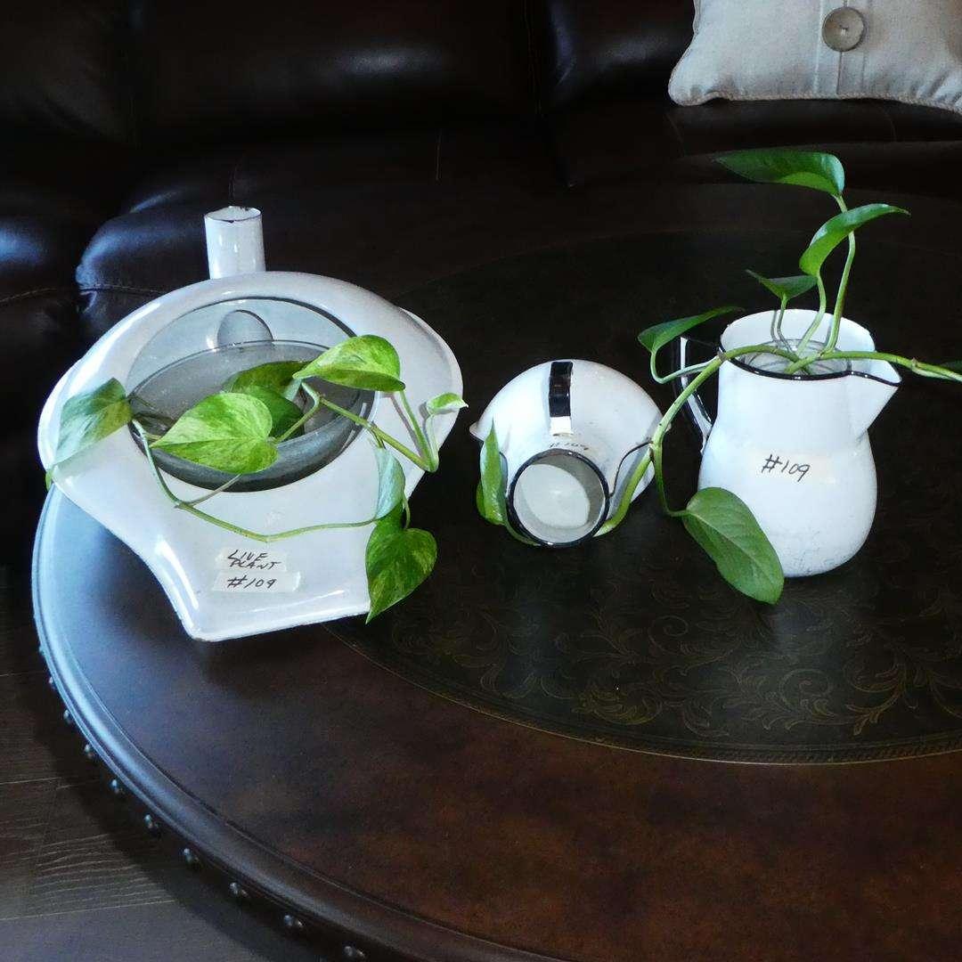 Lot # 109 - Vintage White Porcelain Bedpan Urinal Chamber Pot, Hospital Urinal & Pitcher w/Live Plants  (main image)