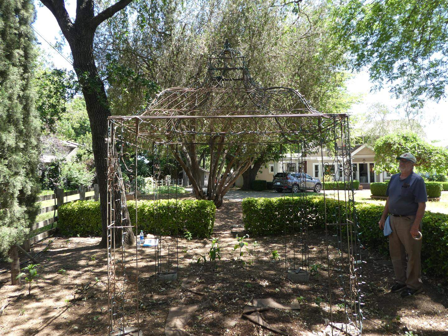 Lot # 163 - Amazing Metal Trellis Gazebo - 7'ft by 7ft by 10ft tall  (main image)