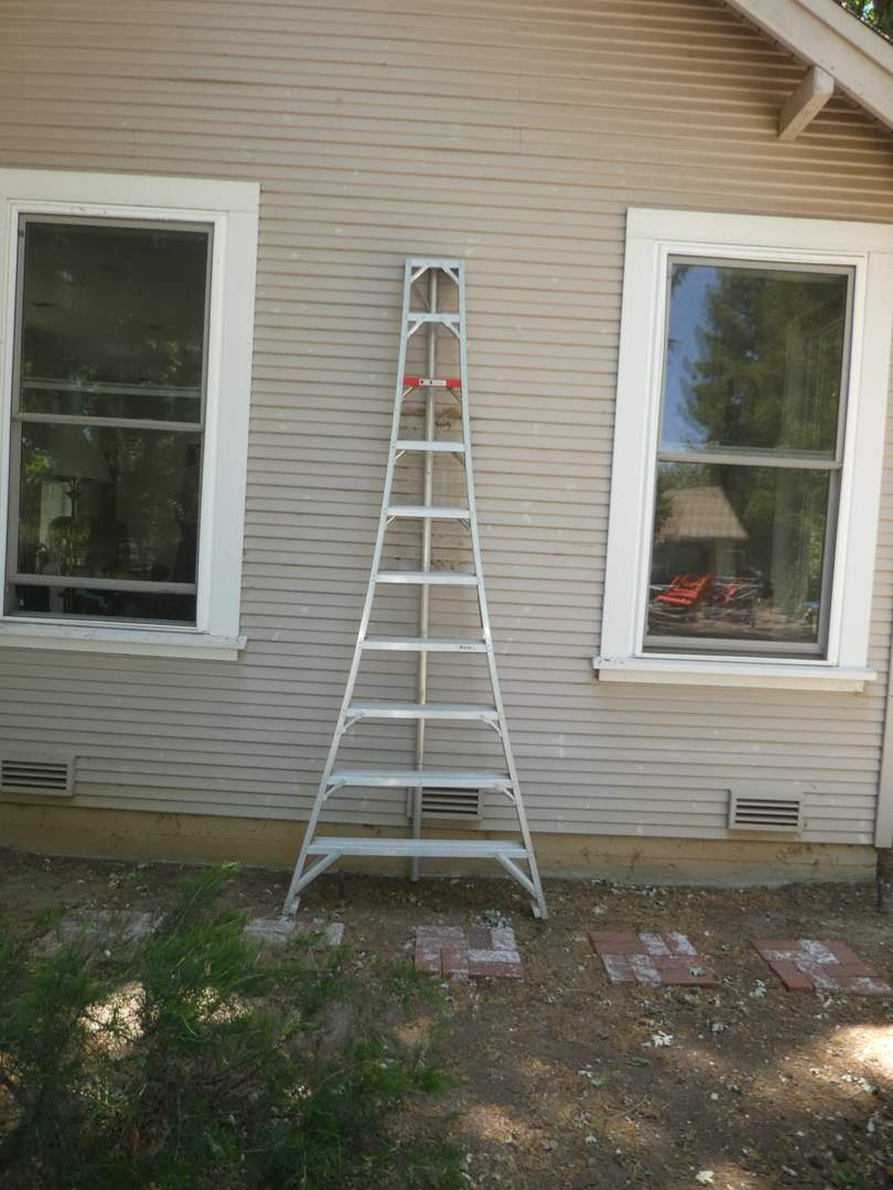 Lot # 226 - 10 Ft. Stokes Orchard Ladder