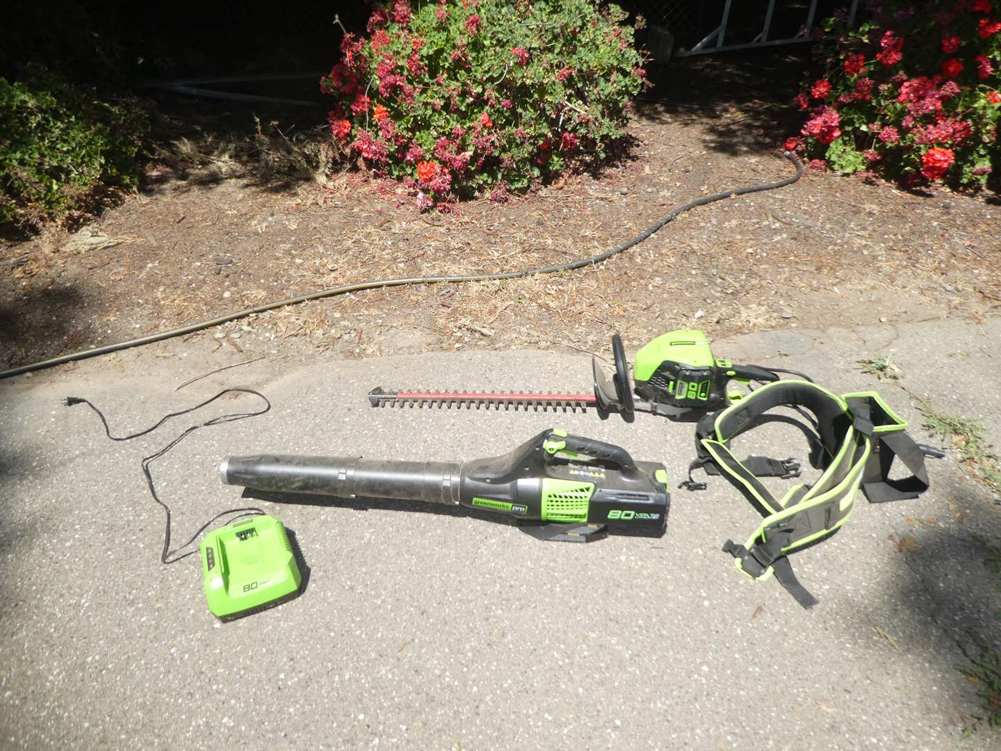 Lot # 228 - Greenworks Pro Blower and Hedge Trimmer