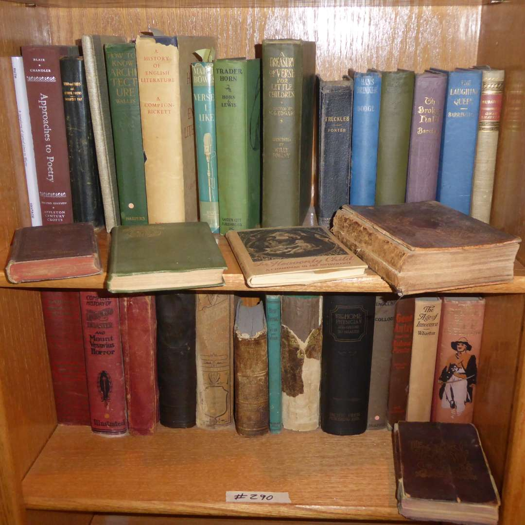 Lot # 290 - Vintage & Antique Book Lot (History, Poetry & English Literature)  (main image)