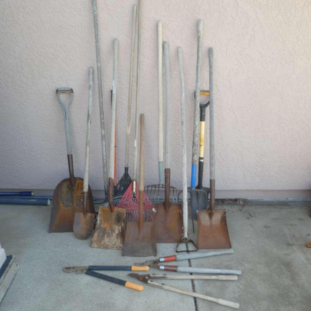 Lot # 443 - Yard Tools -- Variety of Shovels, Rakes, Hay Forks and Pruners (main image)