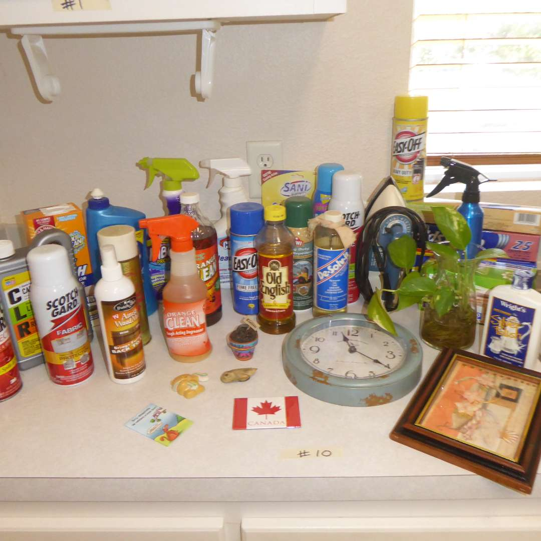 Lot # 10 - Household Cleaning Supplies, Plant & Small Clock