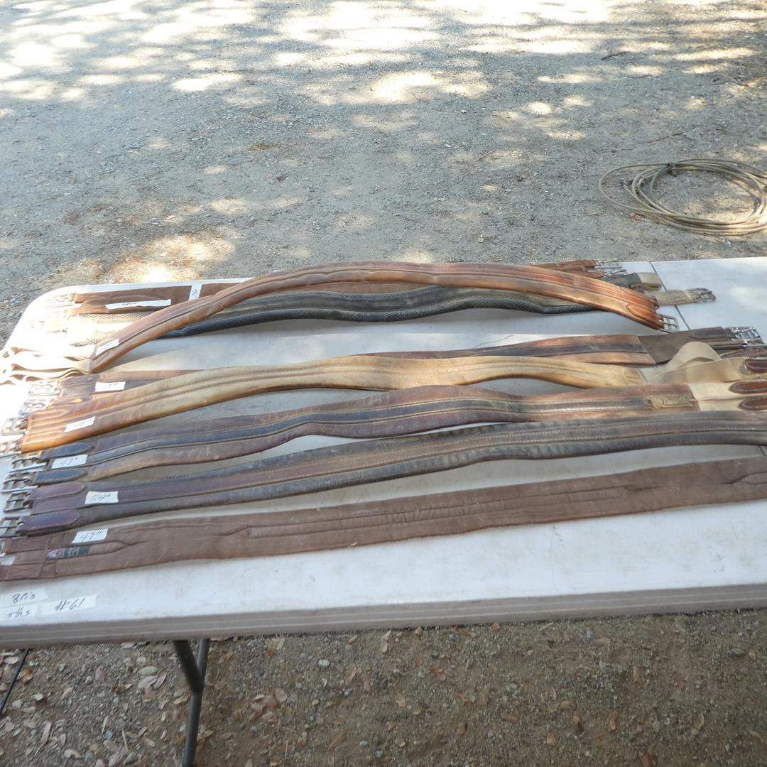 Lot # 61 - Eight Girths - See Pics For Sizes (main image)