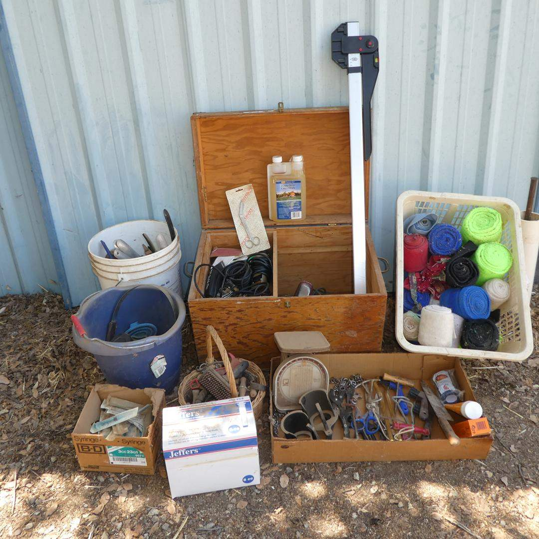 Lot # 75 - Horse Grooming & Horse Care Supplies (main image)
