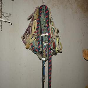 Lot # 84 - Halters & Lead Ropes