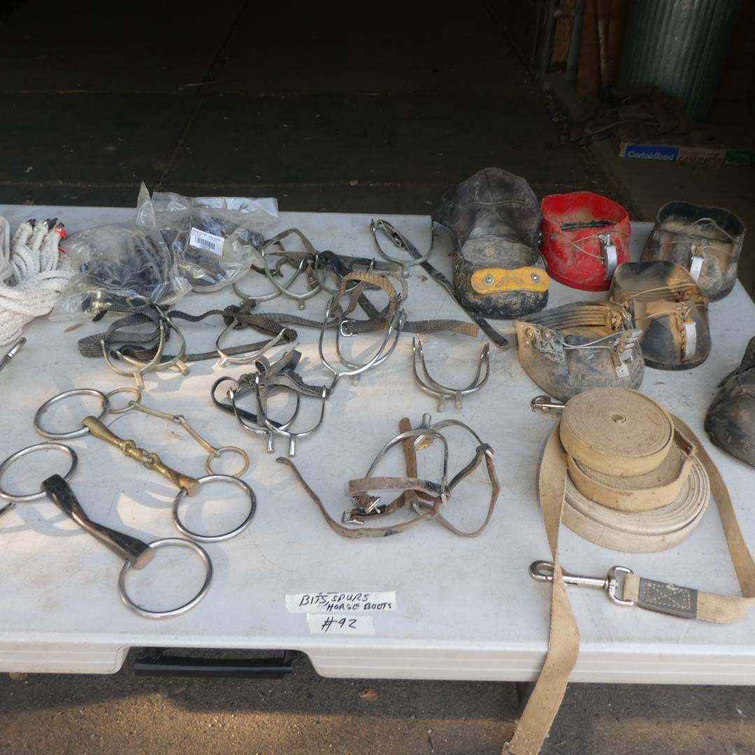 Lot # 92 - Assorted Bits, Spurs, Horse Boots & Lung Lines (main image)