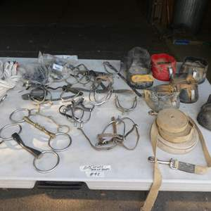 Lot # 92 - Assorted Bits, Spurs, Horse Boots & Lung Lines