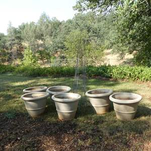 Lot # 131 - Six Large Plastic Pots & Five Tomato Cages