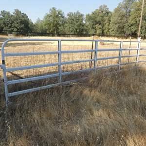 """Lot # 121 - Heavy Steel Gate - 20'ft Long x 52""""in Tall"""