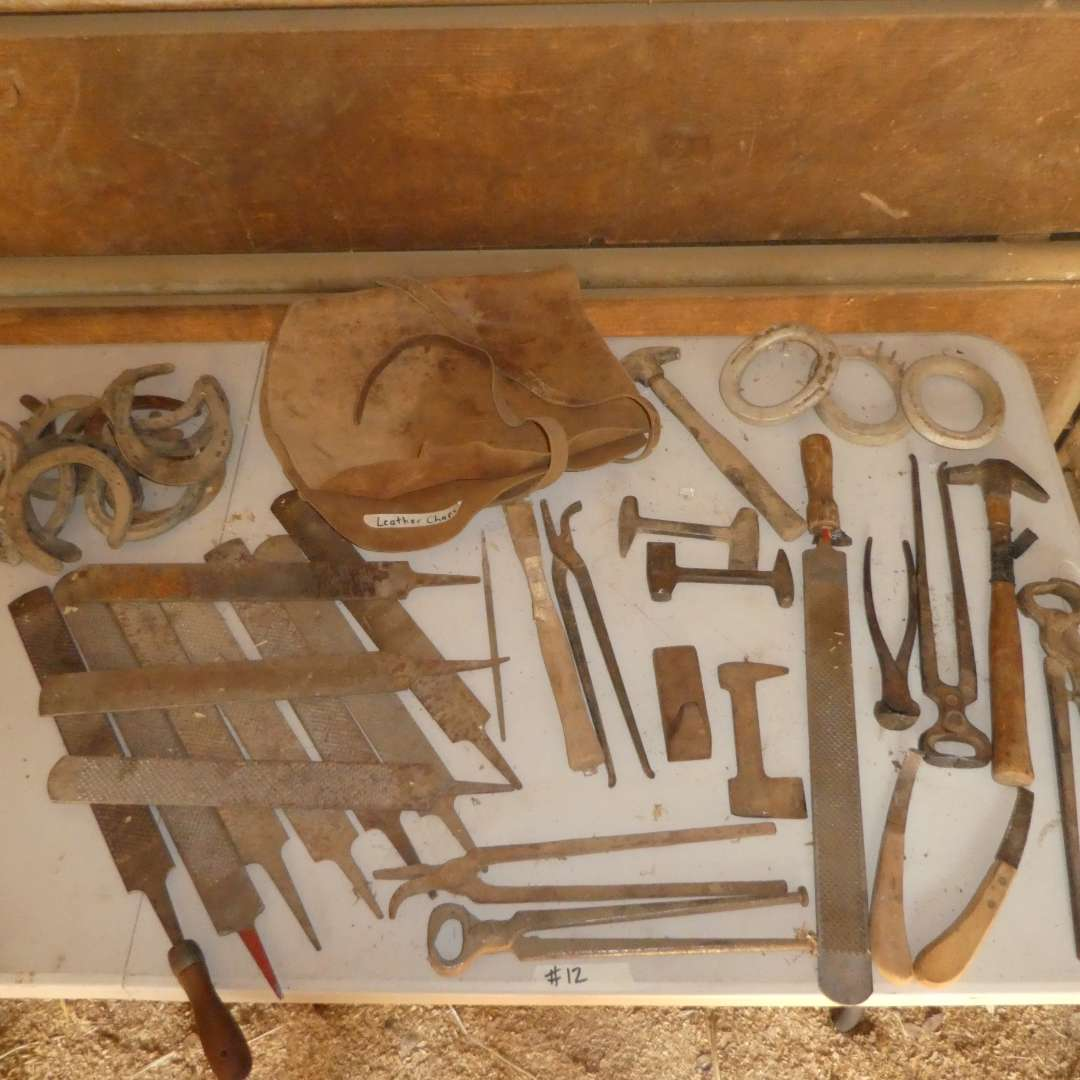 Lot # 12 - Assorted Hoof Files, Metal Working Tongs, Horseshoes and Leather Chaps (main image)
