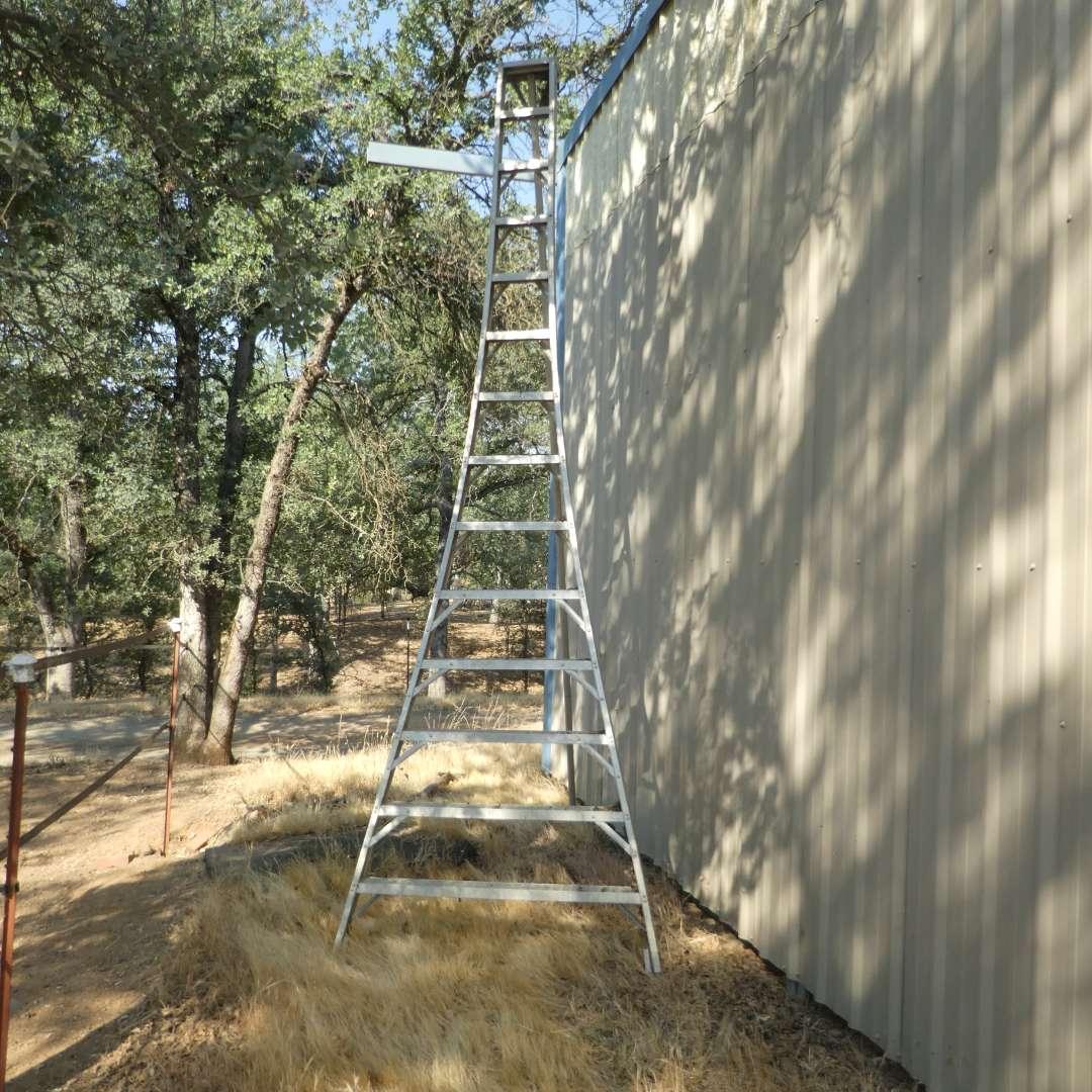 Lot # 43 -  14 FT Orchard Ladder (main image)