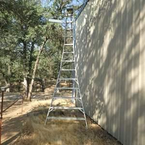 Lot # 43 -  14 FT Orchard Ladder