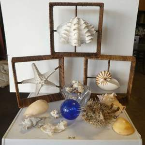 Lot # 18 - Beach House Sea Shell Decor, Puffer Fish, Glass Float and More