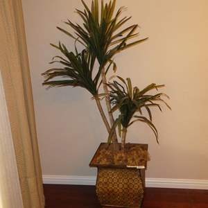 Lot # 60 - Potted Artificial Yucca Tree