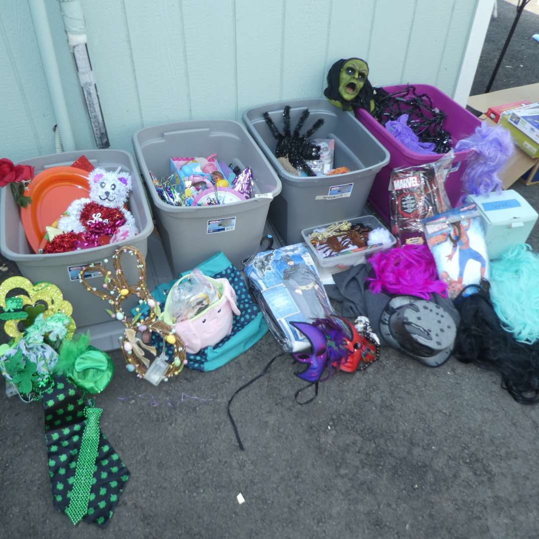 Lot # 198 - Variety of Holiday Decor and Halloween Costumes  (main image)