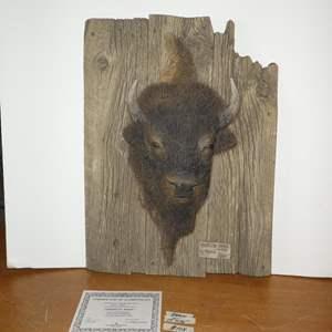 "Lot # 104 - Vintage 1992 Authentic Original George Turner's Relief Sculpture ""American Bison"" 876/3000"