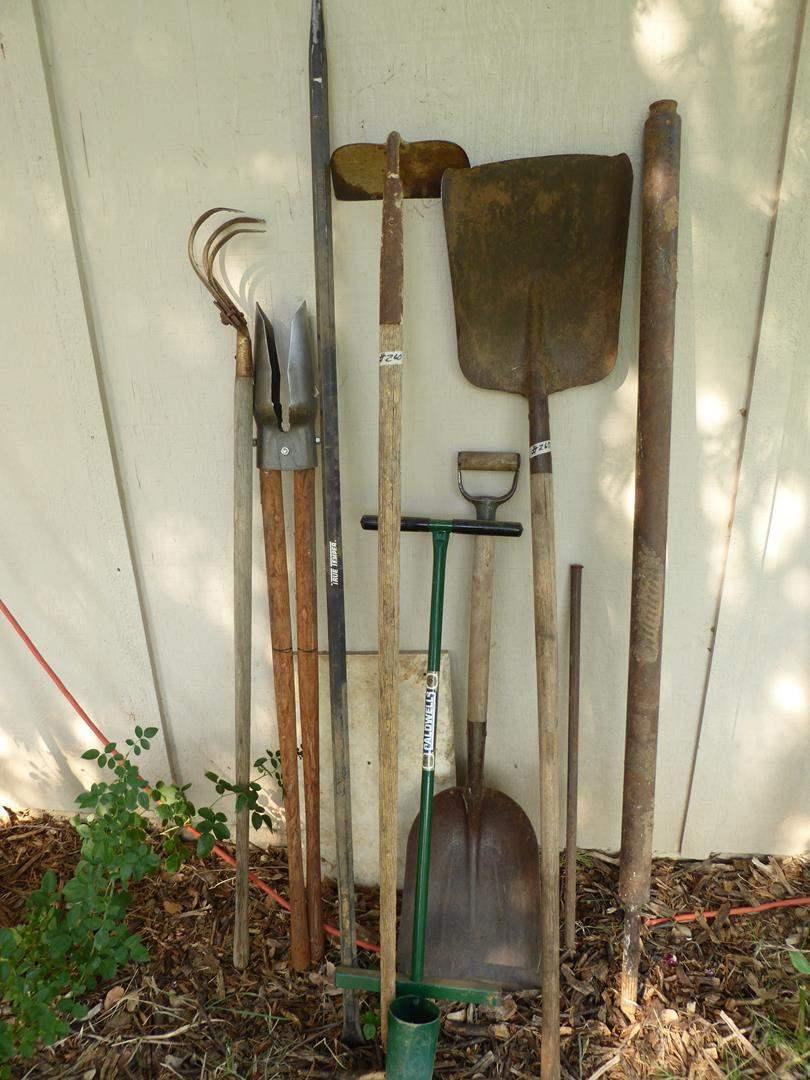 Lot # 260 - Yard & Garden Tools (main image)