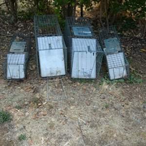 Lot # 241 - Animal Traps