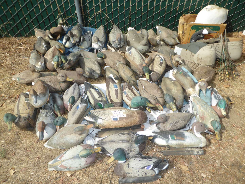 Lot # 437- Huge Lot of Duck Decoys (main image)