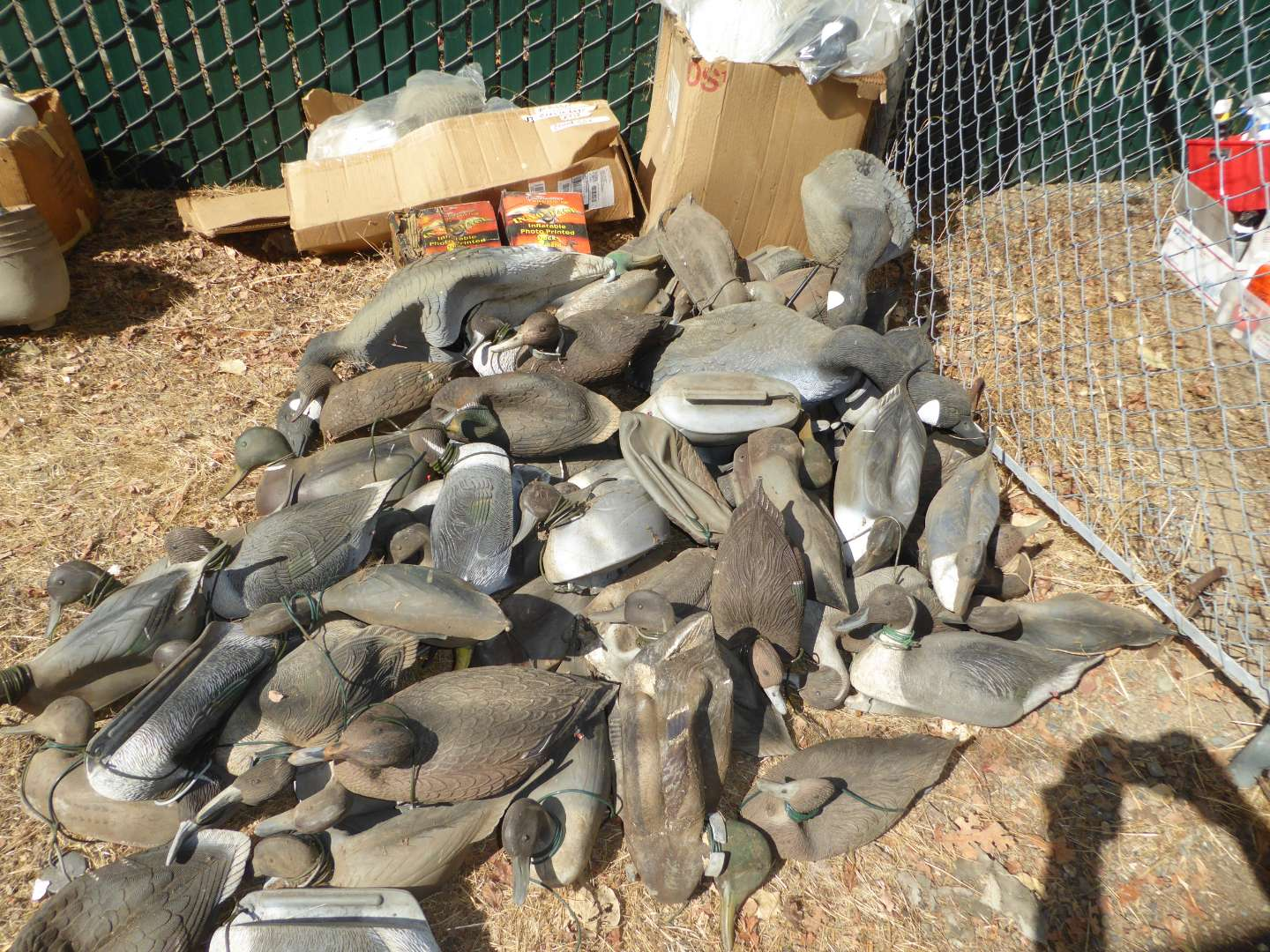 Lot # 438 -Lot of Geese Decoys (main image)