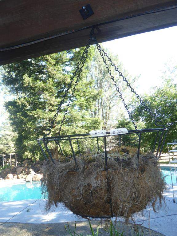 Lot # 36 - Four Hanging Wire Planters (main image)
