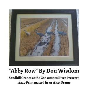 Lot # 71 - Abby Row by Wisdom Photography, Framed Photo of Sandhill Cranes (Auction Item)