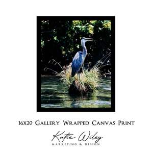 """Lot # 72 - """"Hungry For Summer"""", Print by K. Wiley.  Blue Heron (Auction Item)"""