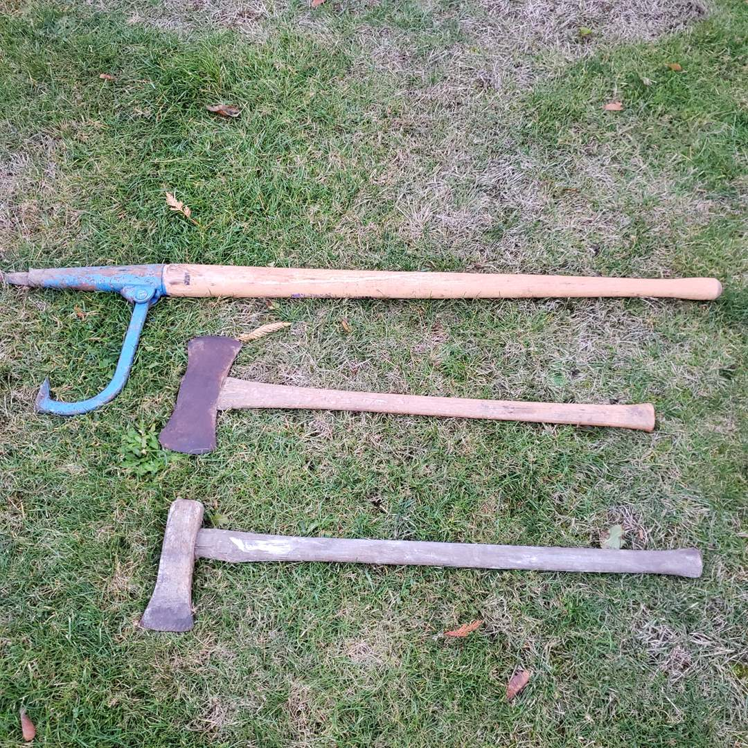 Lot # 6 - Tools * Log Splitting and Moving Tools (main image)