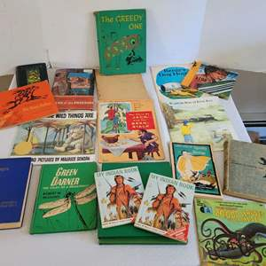 Lot #38 - Vintage Children's Books: Green Darner, Arabian Knights, Ivanhoe and More