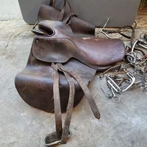 "Lot #145 - Argentina 21"" English Saddle and Tack"