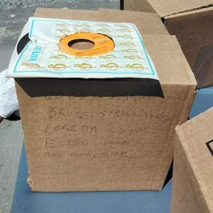Lot #133-D:  More 45's Records Lot of 100