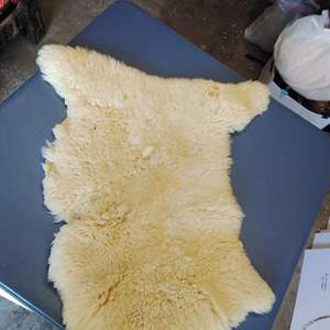 Lot 186-D:  Sheep Skin Rug 29 x 20