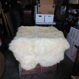 """Lot 188-D:  Sheep Skin Rug Largest of them 65"""" x 42"""""""