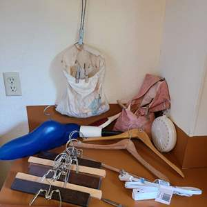 Lot # 206 - Clothes Hangers and Pins Lot