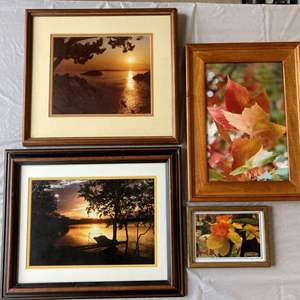 Lot #EL266 - More Professional Photography Framed Art