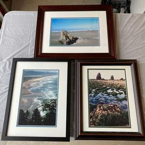 Lot #EL276 - PNW Framed Professional Photography #3